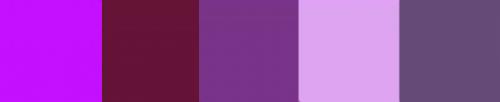 Purple Mix 50g